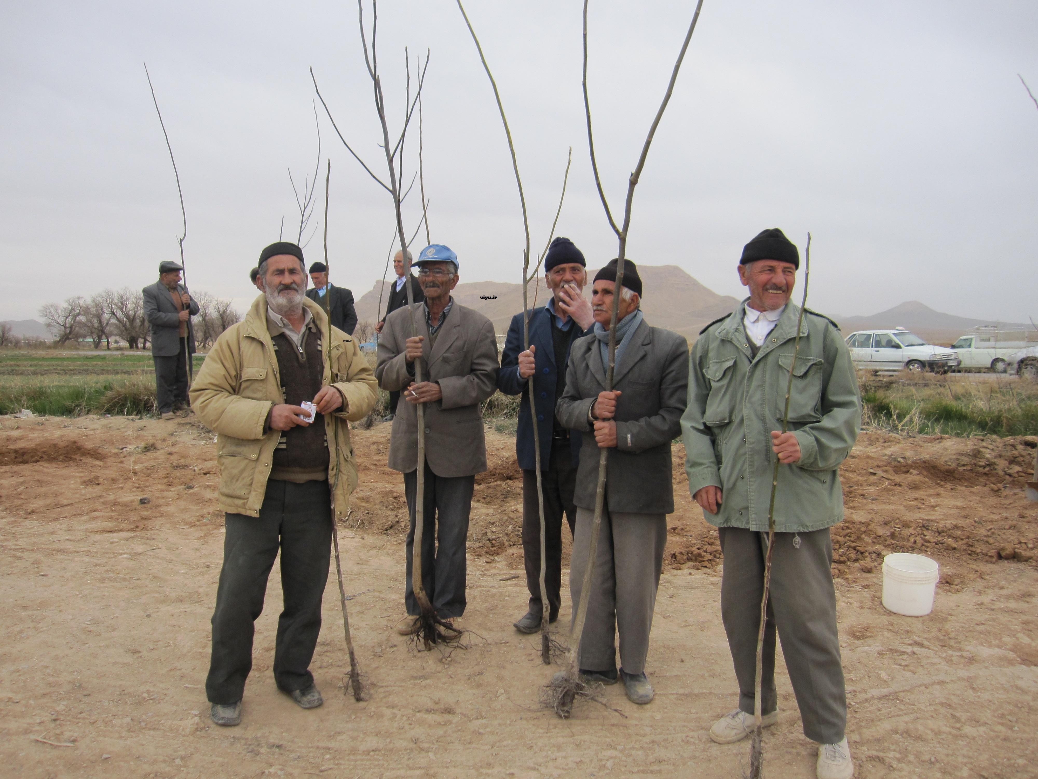 همایش درختکاری